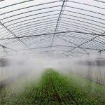 Hệ thống phun sương